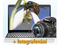 Úvod do makrofotografie (+ fotografování)